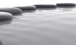 Mindfulness Training Courses
