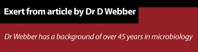 Dr webber header